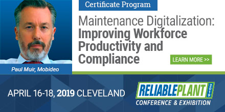 Plant Maintenance Digitalization at Reliable Plant 2019