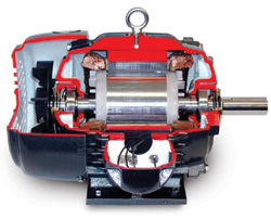 In regard to proper lubrication, bearings must receive not only a good, quality lubricant but the correct quantity at the proper intervals in order to obtain optimum life and reliability. Under- or over-greasing can be detrimental to reliability. Under-greasing does not provide the lubricant at the time it is needed, resulting in bearing wear or heat damage. Over-greasing can damage shields or significantly increase operating temperatures due to fluid shear friction. This reduces the grease's lubricating capability. Oil-lubricated bearings must have the correct type and viscosity of oil for the same reasons stated previously. Closely follow manufacturer's recommendations for lubrication types, amounts and schedules. In regard to temperature, this is the nemesis of electric motors. Overload, under-voltage, over-voltage, unbalanced voltage and improper ventilation can all work to increase the motor's operating temperature. The overused rule of thumb is that motor life is cut in half for every increase of 10 degrees Celsius. Although the rule's accuracy may be in question, it illustrates the point well. Any care given to mitigate the operating temperature will be rewarded with increased life and reliability. And, don't make the mistake of increasing the rated capacity of a motor applied in a high ambient temperature environment to accommodate the winding temperature increase. Particularly on enclosed machines, this could result in unacceptable bearing operating temperatures, leading to early demise.