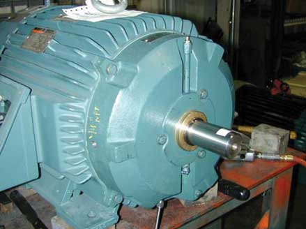 grease lubricated electric motors a new perspective