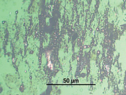 Figure 6. Photomicrograph showing high concentration of ferrous spheres (1,000x magnification)